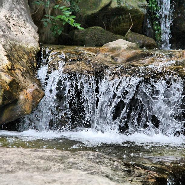 Instagram Foto - Japanischer Garten im #Nordpark #Wasser