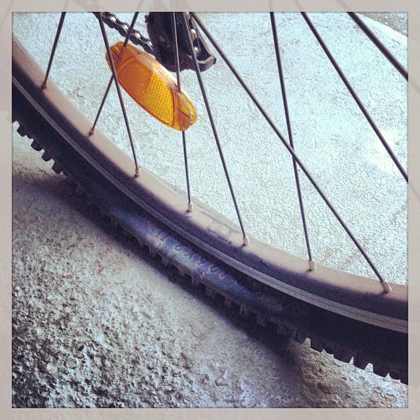 Foto - Heute leider keine neuen Fotos, weil mein Fahrrad einen platten hat.